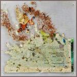 Yvonne Kieft - Dynamic organics 'Into my Garden II', papier mixed media plexiglas 22x22x4 cm, 2016